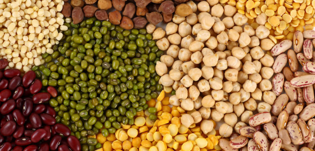 Weight loss and a Vegan diet: Legumes: Beans and pulses