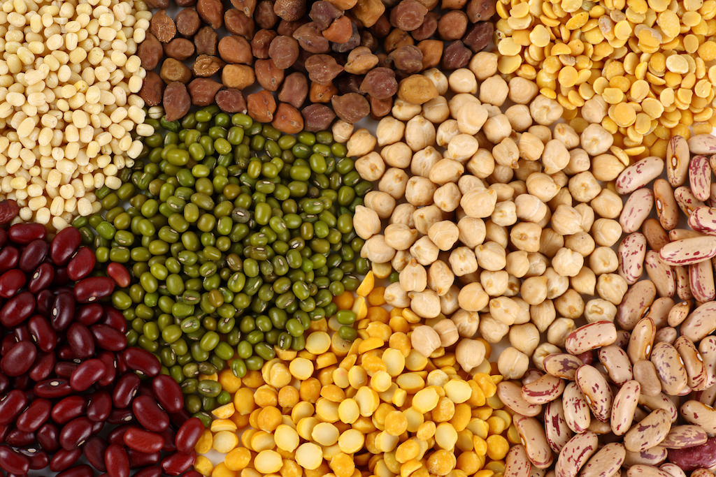 Weight loss and a Vegan diet: Beans & Pulses