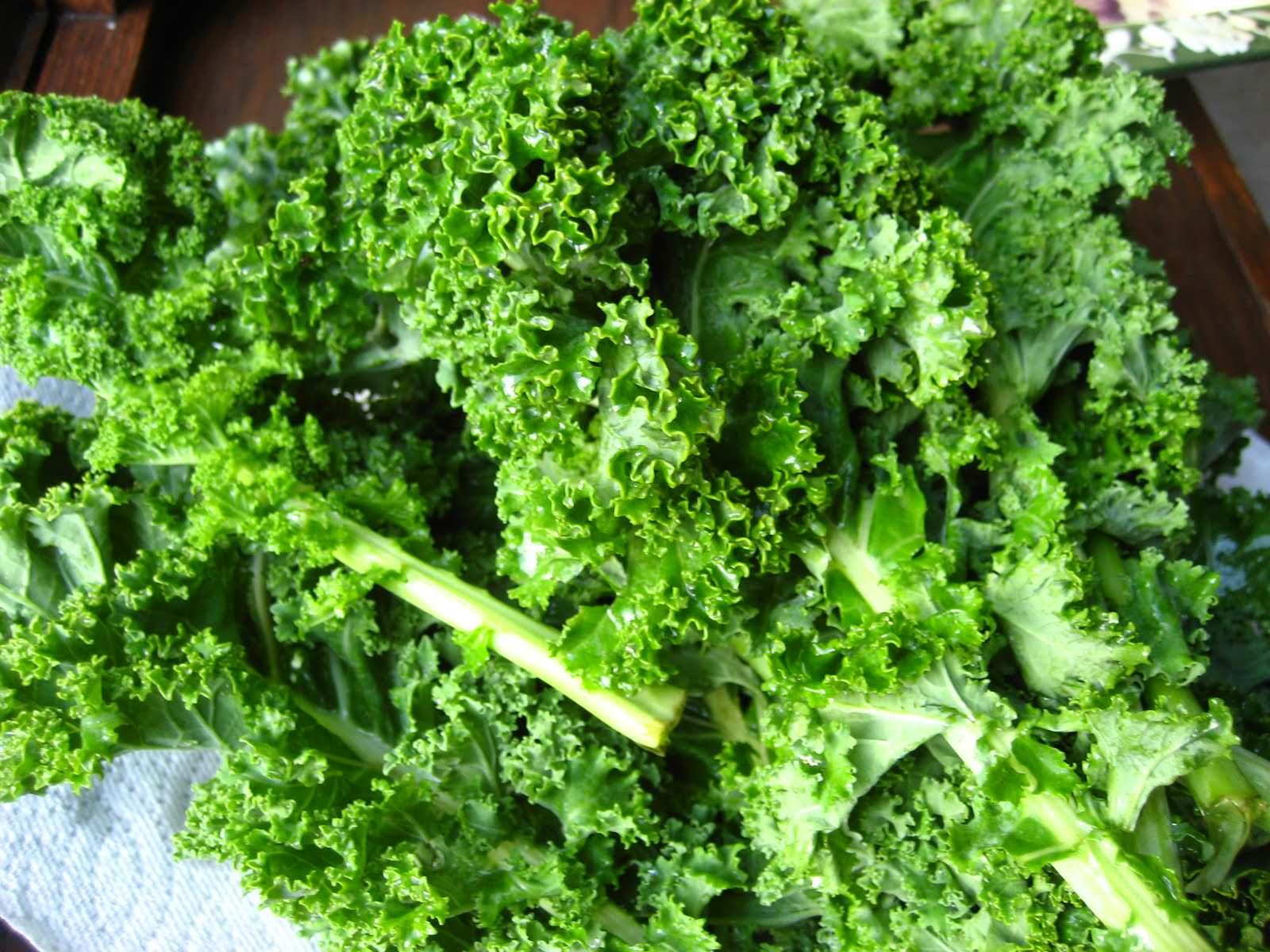 Kale - a superfood?