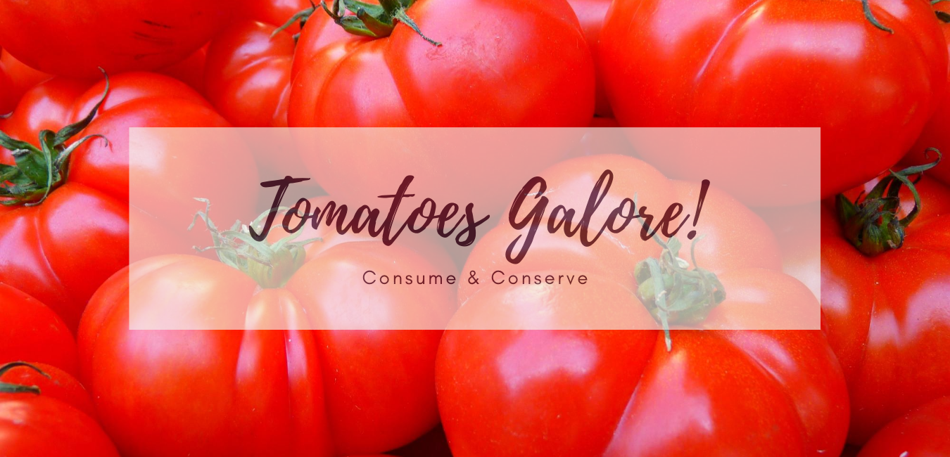 Meals that use up glut of tomatoes